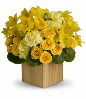 Teleflora's Sunshine Chic Bouquet Teleflora in Mount Pearl, NL | MOUNT PEARL FLORIST