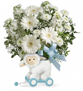 Teleflora's Sweet Little Lamb - Blue TNB05-1B Bouquet in Moses Lake, WA | FLORAL OCCASIONS