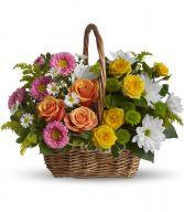 Teleflora's Sweet tranquility Basket sympathy