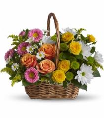 Sweet Tranquility Fresh Floral Basket