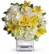Teleflora's Sweetest Sunrise Fresh Flowers in a keepsake cube