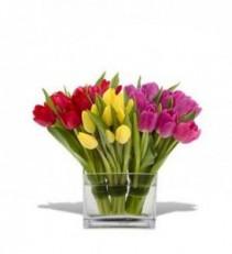 Teleflora's Tulips Together All tulip arrangement.