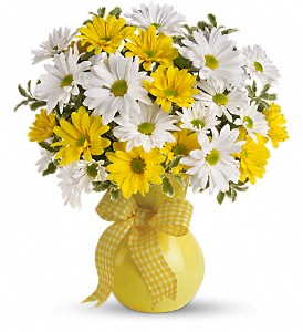 Teleflora's Upsy Daisy Vased Arrangement