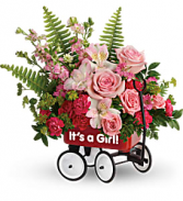 Teleflora's Welcome Beautiful TNB12-1B Bouquet
