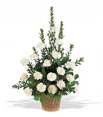 Teleflora's White Carnation Basket Arrangement