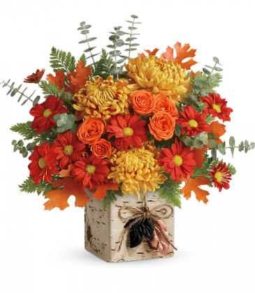 Teleflora's Wild Autumn Bouquet T18T300A