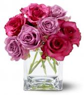 Teleflora's Wild Plum Roses Roses