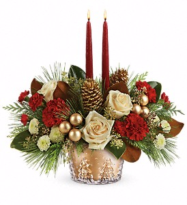 Teleflora's Winter Pine Bowl  in Dover, NH   SWEET MEADOWS FLOWER SHOP
