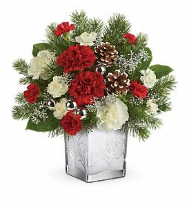 Teleflora's Woodland Winter Bouquet T17X600A Christmas Keepsake Arrangement