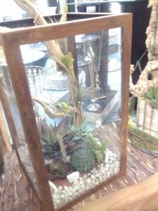 Terrarium Garden  in Hialeah, FL | JACK THE FLORIST