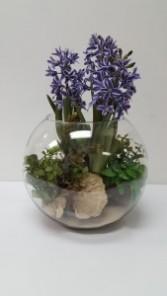 Terrarium Plant Silk