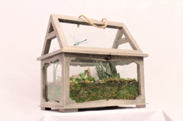 Terrarium with Succulents   Garden
