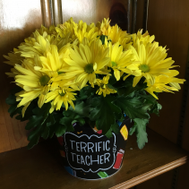 Terrific Teacher Planter