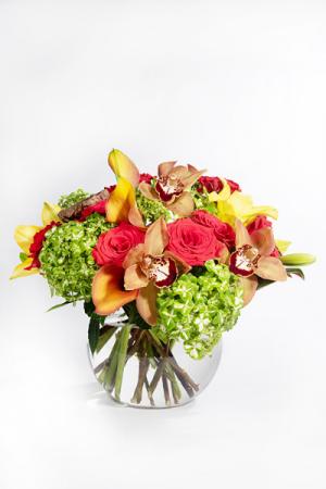TG010 Round Arrangement in Falls Church, VA | Geno's Flowers