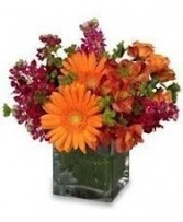 Th 1-Mixed flowers in a compact vase arrangement Flowers and colors may vary
