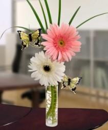 Thank you's a Flutter