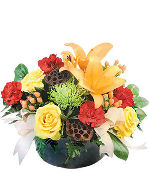 Thankful and Bright Floral Arrangement in Chicago, IL | Dahlia Blooms