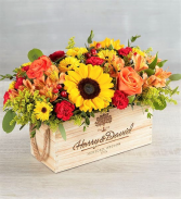 Celebrating You! Glorious Colors in a Keepsake Box