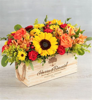 Celebrating You! Glorious Colors in a Keepsake Box in Gainesville, FL | PRANGE'S FLORIST