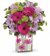 THANKS A DAISY #2  in Fort Lauderdale, FL   ENCHANTMENT FLORIST