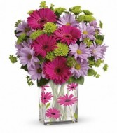 Thanks a Daisy Bouquet by Enchanted Florist