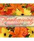 Thanksgiving Flowers Designer's Choice