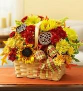 Thanksgiving Magic  Basket Arrangement