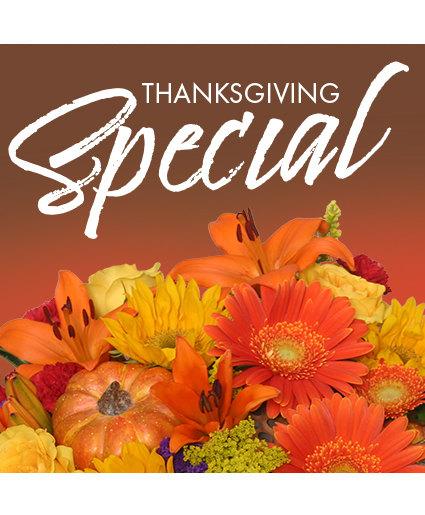 Thanksgiving Special Designer's Choice