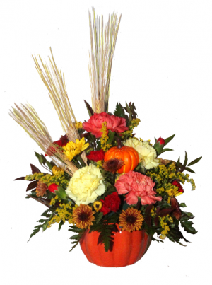 THANKSGIVING SPECIAL   Order Early....limited supply of containers in Penn Yan, NY | Garden of Life Flowers