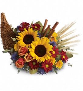 Sunflower Horn of Plenty Cornucopia
