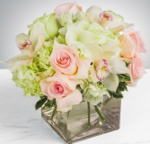 THE BEAUTY OF FLOWERS ELEGANT MIXTURE OF ROSES