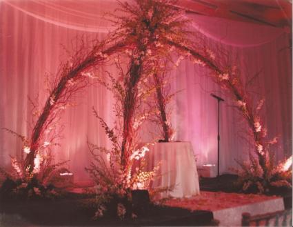 the birdnest wedding arch  ceremony arch