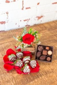The Brittany  Sweet Rustic Love