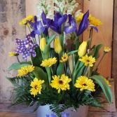The Bulb Garden  Designers Special