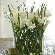 Braided Calla Lilies Spring