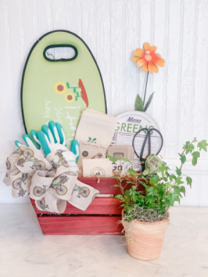 The Candide Gift Basket  in Bay Saint Louis, MS | The French Potager