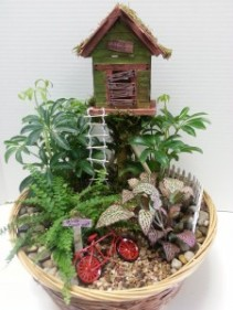 The Club House Mini Garden