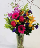 The Dazzler  Arrangement