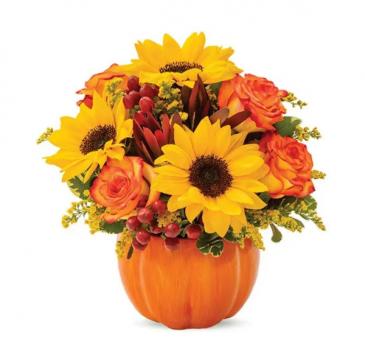 The Fall Pumpkin