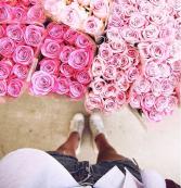 Florist's Choice arrangement Designers choice