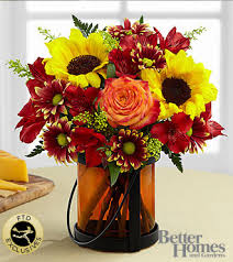 Giving Thanks™  by Better Homes and Gardens®