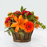 The FTD® Harvest Memories™ Basket Basket Arrangement