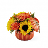 The FTD Harvest Traditions Pumpkin