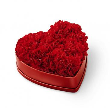 The FTD Heartfelt Carnation Box