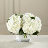 The FTD® White Hydrangea Bouquet