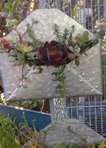 The Gift of Life Unique Succulent Arrangements