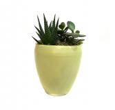 "The ""Hello Yellow!"" Succulent Planter"