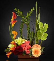 The Hopeful Promises Luxury Bouquet