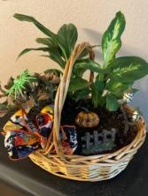 the jack-o-lantern planter basket