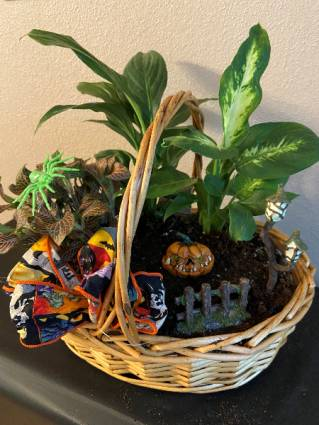 the jack-o-lantern planter basket